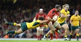 08.11.14 - Wales v Australia - Dove Men Series 2014 -
