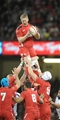 15.11.14 - Wales v Fiji - Dove Men Series -