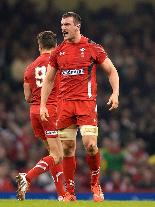 29.11.14 - Wales v South Africa - Dove Men Series -
