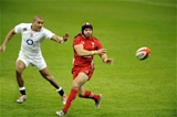 06.02.15 - Wales v England-