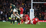 17.10.15 - South Africa v Wales, Rugby World Cup 2015 Quarter Final - Sam Warburton, Alun Wyn Jones, Bradley Davies and Ken Owens of Wales show their disappointment while South Africa players celebrate at the end of the match