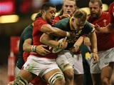 02.12.17 - Wales v South Africa, 2017 Under Armour Autumn Series - Dan du Preez of South Africa is tackled by Taulupe Faletau of Wales