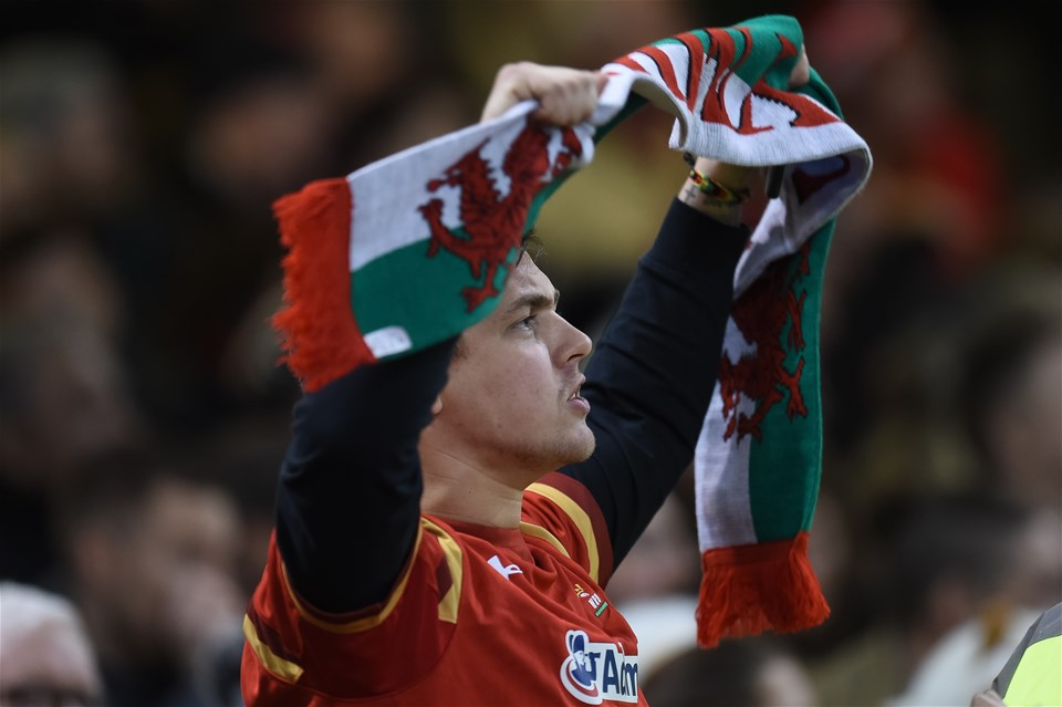 22.02.20 - Wales v France - Guinness Six Nations - Welsh fan